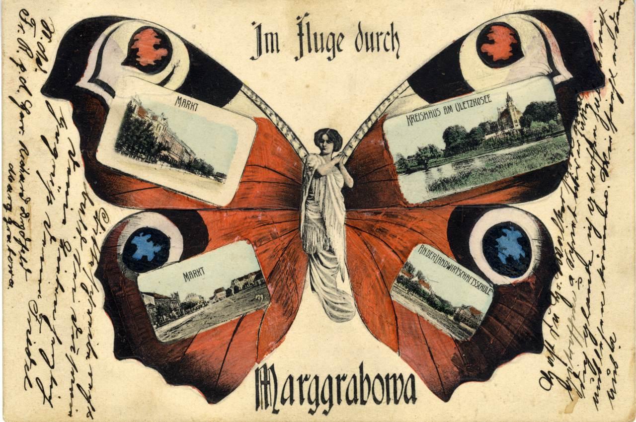 Kartka pocztowa z motywem motyla.